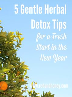 There are so many detox methods out there, it's hard to know where to begin. These five tips are an excellent starting point for anyone wanting to detox after a season of indulging in a few too many treats ;)