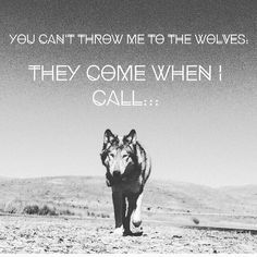 The wolf is my spirit animal! Great Quotes, Quotes To Live By, Me Quotes, Motivational Quotes, Inspirational Quotes, Random Quotes, Positive Quotes, Wolf Spirit, My Spirit Animal