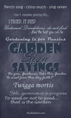 There are lots of Garden Sign Sayings to delight your visitors;  here are just a few of them... Gardening | Garden Art | Garden Signs
