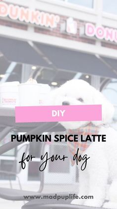 Make your dogs their very own pumpkin spice �latte� treat for with only 3 ingredients that can be served as a drink or a frozen treat!   diy dog treats   pumpkin dog treat   psl   fall   fall dogs  