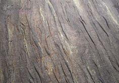 Сегодня я покажу, как можно сделать имитацию древесной коры. Материалов нам понадобится совсем немного (количество указано для странички размером 20 на 20 см): - Клей ПВА (да-да-да, не удивляйтесь) - 125 мл - Медицинский бинт из нетканого материала - 1 упаковка - Акриловые краски нужных оттенков (у меня черный, жженая умбра, жженая сиена и золото) - Кисточка для клея - обязательно плоская из…