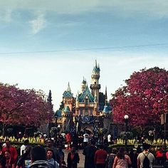 I love Disneyland but I wonder about this place sometimes... by meeshmcfly