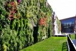 The World's Largest Living Wall Flourishes With 44,000 Plants at Milan's Il Fiordaliso Shopping Center