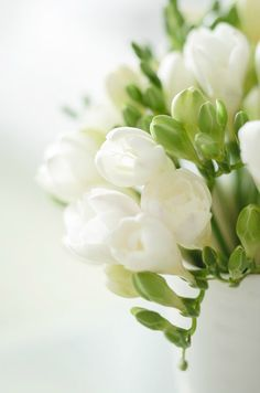 White Freesia flowers - I just adore them