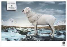 25 Best and Creative Animal themed Print Ads