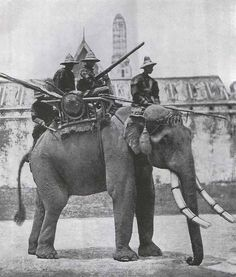 A Siamese war elephant in 1866. The Siamese Army was utilising war elephants armed with jingals up until the Franco-Siamese War of 1893
