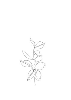 One line minimal artwork - plants and leaves - minimalist line drawing.Instagram - @thecolourstudyEtsy - https://www.etsy.com/uk/shop/TheColourStudyShop?ref=seller-platform-mcnav