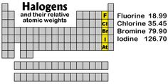 Halogens - position on Periodic Table