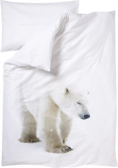 Kodin1 - ANNO Pl setti jääkarhu 90x120 valk | Vuodevaatteet