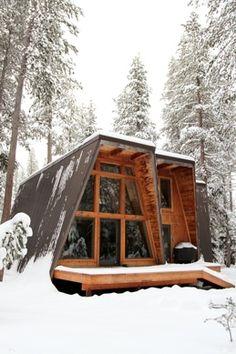 the armadillo cabin