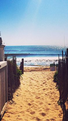 Nature Fence Beach Sandy Way To Ocean #iPhone #5s #wallpaper