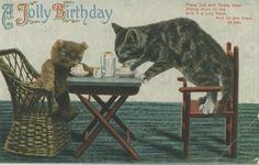 A Jolly Birthday - vintage cat birthday card Vintage Teddy Bears, Vintage Cat, Vintage Greeting Cards, Vintage Postcards, Kitten Images, Magic Cat, Teddy Bear Pictures, Birthday Postcards, Cat Birthday
