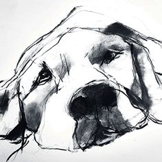 Valerie Davide Dogs - Trowbridge Gallery