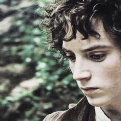 Frodo is not intended to be another Bilbo. Though his opening style is not wholly un-kin.But he is rather a study of a hobbit broken by a burden of fear and horror - broken down, and in the end made into something quite different. - Letters of JRRT