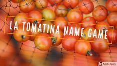La Tomatina Name Game – Language Class Engaged Class Activities, Classroom Activities, Classroom Ideas, Beginning Of School, Back To School, Movie Talk, Name Games, Spanish 1, Kids Writing