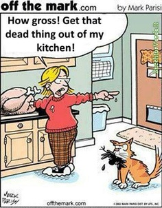 If two do the same thing, it's far from the same - Vegan - Best Humor Funny Vegan Memes, Vegan Quotes, Vegan Facts, Vegan Funny, Facebook Humor, Oh The Irony, The Animals, Strange Animals, Vegan Animals