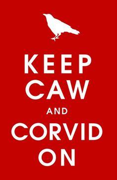 Corvid On