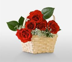 http://www.freewebsitetemplates.com/members/rinasana0/#info  Why Order A Flower Delivery Today,  Flowerwyz,Flower Wyz,Flowerwyz Flower Delivery,Flower Delivery,Flowers Online,Send Flowers,Flowers Delivery,Cheap Flowers,Cheap Flower Delivery,Online Flowers,Sending Flowers,Send Flowers Online  Every blossom you choose need to be fresh and also hand selected. You can locate countless online boutique, so it is very important to pick wisely.