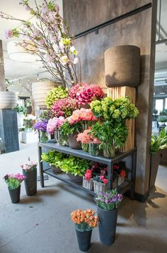 Winston Flowers & Garden in Chestnut Hill ❥ڿڰۣ-- ↞❁✦彡●⊱❊⊰✦❁ ڿڰۣ❁ ℓα-ℓα-ℓα вσηηє νιє ♡༺✿༻♡·✳︎· ❀‿ ❀ ·✳︎· FR July 2016 ✨вℓυє мσση✤ॐ ✧⚜✧ ❦♥⭐♢∘❃♦♡❊ нανє α ηι¢є ∂αу ❊ღ༺✿༻♡♥♫ ~*~ ♪ ♥✫❁✦⊱❊⊰●彡✦❁↠ ஜℓvஜ Flower Shop Decor, Flower Shop Design, Flower Farm, Flower Pots, Flowers Garden, Flower Shop Interiors, Winston Flowers, Charity Water, Beautiful Front Doors