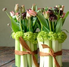 Celery Vases by nickyllewellynflowers.co.uk