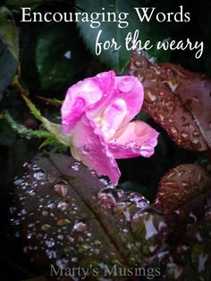 Spoken from a heart of compassion for the weary and broken, Marty Walden shares the encouraging words that God is with you and you are not alone.