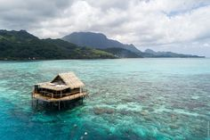 Остров Раиатеа: мараэ Тапутапуатеа и центр полинезийского треугольника Water, Outdoor, Gripe Water, Outdoors, Outdoor Games, The Great Outdoors