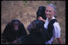 Jane-Goodall-with-chimp-2