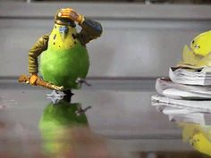"""""""I'm late, I'm late, I'm late!"""" 