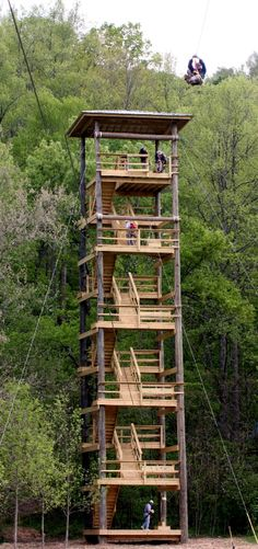 Zipline Canopy Tours of Blue Ridge | Blue Ridge, Georgia
