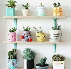 Vasinhos de plantas customizados.