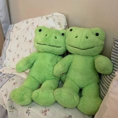 Frog Pictures, Indie Room, Cute Frogs, Frog And Toad, Build A Bear, Doja Cat, Indie Kids, Spring Green, Alpacas