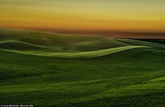 World famous: The crop fields looks just as stunning during sunset as they do during the day