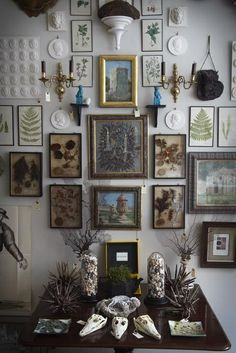Beautiful accent wall setup pressed plants in frames.--- wall collage idea
