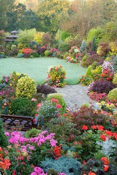Outdoor garden - lots of flowers