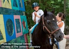 Riding to the Top: Therapeutic Riding Center in Windham, Maine: