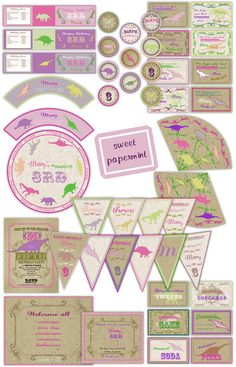 Dinosaur Girl's Birthday Large Party Pack Set  Package - Digital Printable Girl