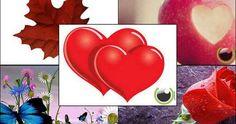 Kata Kata Romantis Untuk Menyatakan Cinta Kepada Seseorang