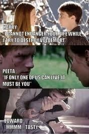 This perfectly summed up why I fell in love with Harry and Peeta, and why I think Edward is the creepiest blast ended skank to ever disgrace YA novels.