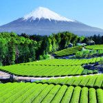 Japan | Awesome places to visit in Japan