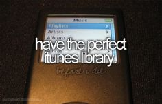 Have the perfect iTunes library.