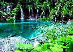 Bathing here... Surinam