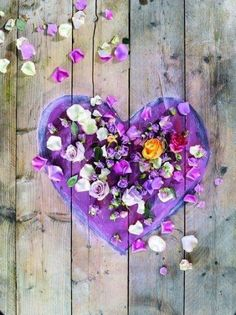 Happy Valentine's Day with this Purple petal heart to <3 Christine and all her lovely ladies pinning on this board <3