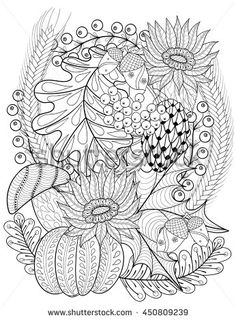 Vector autumn background with pumpkin, sunflower, leaves, acorns, branches, mushroom for adult coloring books. Hand drawn artistic…