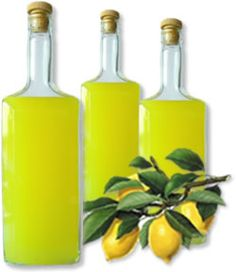 Step-By-Step Instructions on How to Make the BEST Limoncello. This Is Our Proven Limoncello Recipe--Tested and Loved by MANY Home Liqueur Enthusiasts. Making Limoncello, Homemade Limoncello, Alcoholic Drinks, Cocktails, Beverages, Cocktail Recipes, Drink Recipes, Salad Recipes, After Dinner Drinks
