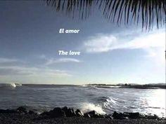 Julio Iglesias - El amor -   (Letra/Lyrics)