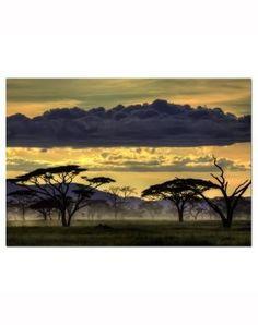 African Landscape 1000-Piece Puzzle