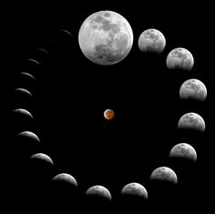 ♥ The montage above showcases the lunar eclipse of March 2007 as photographed from Portugal. Tonight after midnight, there will be a total lunar eclipse visible in both North and South America. Wicca, Magick, Witchcraft, Eclipse Lunar, Spirals In Nature, Luna Guitars, Look At The Moon, Moon Pictures, Moon Pics