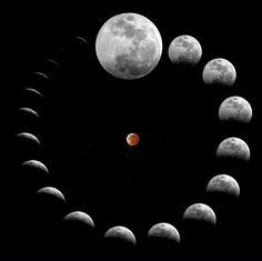 Lunar Eclipse | Lunar Eclipse Montage - wordlessTech