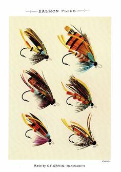 Neat SALMON Flies Print Vintage Fly Fishing Print Gallery Wall Art #2406d #Vintage