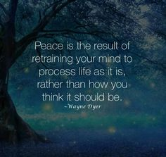 Peace is the result of retraining your mind to process life as it is, rather than how you think it should be.